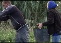 Campaña Seguridad Trabajadores Agrarios COAG