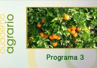 Cuaderno Agrario PGM 03