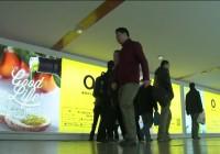 """Shangai, nueva """"Embajada de la buena vida"""" del aceite de oliva español"""
