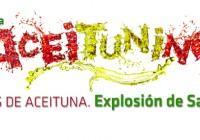 Sevilla acogerá en abril la final del Concurso de Jóvenes Autores El Aceituning 2015, presentado ayer en Madrid
