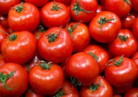 Medidas excepcionales de ayuda a los productores de frutas y hortalizas por la prórroga del veto ruso