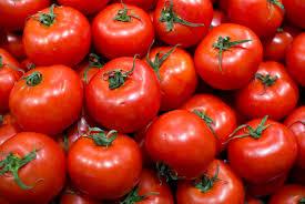 Almería lidera las exportaciones andaluzas de productos agroalimentarios