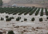 El Gobierno indemnizará los daños producidos en zonas no asegurables por temporales
