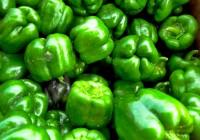 Aceitunas, uvas, tomates, pimientos y lechugas: productos estrella de 2014