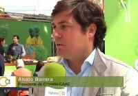 Semana Ecológica de Ecovalia 2015: El Ecooking