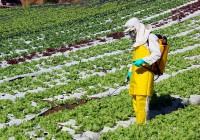Aumenta el consumo de fertilizantes y vuelve a niveles de 2007