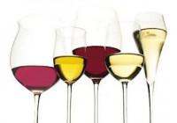Celebrado en Montilla el Concurso Internacional de Vinos Ecológicos EcoRacimo