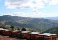 Huelva lidera la producción de miel ecológica en Andalucía