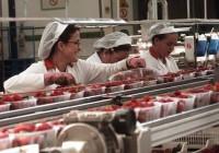 Abierto el plazo para solicitar el pago de las subvenciones para productos hortofrutícolas afectados por el veto ruso
