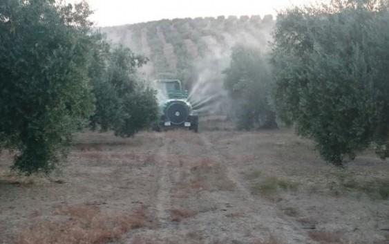 Curso de especialización: técnicas de aplicación de fitosanitarios en olivar
