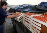 El precio de los alimentos se multiplicó por cuatro entre origen y destino en el mes de mayo