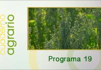 Cuaderno Agrario PGM 19