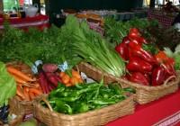 El Ifapa presenta una técnica para diferenciar los alimentos ecológicos en base a los isótopos de nitrógeno que contienen