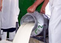 COAG aplaude la aprobación del Real Decreto que obliga a etiquetar el país de origen de la leche y los productos lácteos