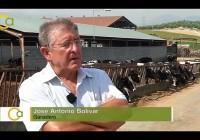 Crisis láctea en Andalucía