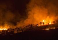 68.500 hectáreas arrasadas por el fuego, 25.000 más que en 2014