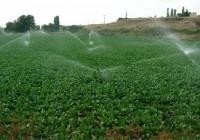 El Ministerio valora la aportación de la agricultura de regadío a la sostenibilidad del medio rural en el Día Mundial del Agua