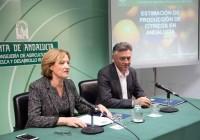 El primer aforo de cítricos para la campaña 2015-2016 prevé una producción de 1,7 millones de toneladas en Andalucía