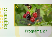 Cuaderno Agrario PGM 27