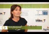 IV Conferencia Internacional de Insectos Entomófagos