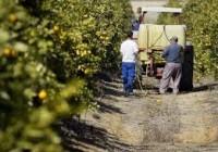 Baja el paro agrícola un 6,4% en septiembre
