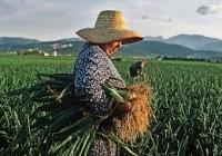 FADEMUR celebra el Día Internacional de la Mujer Rural