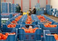 Rusia prorroga un año más su veto a los alimentos europeos