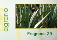 Cuaderno Agrario PGM 29