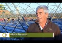 VÍDEO: Plantación de la fresa en Palos de la Frontera