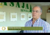 VÍDEO: Balance de la campaña del algodón en Andalucía