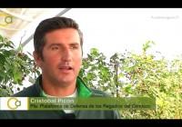 VÍDEO: Entrevista a Cristobal Picón