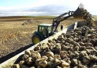 COAG pide que se agilice el pago acoplado al cultivo de remolacha