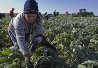 Los jóvenes cada vez crean más empresas agrícolas