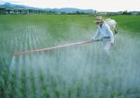 Baja un 4,64% la venta agrícola de fertilizantes