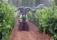 Los agricultores andaluces apuestan por una constante subida del uso de los controles biológicos