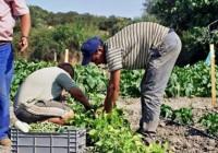 COAG reclama una ofensiva diplomática española para suspender el acuerdo agrícola con Marruecos