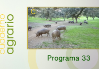 Cuaderno Agrario PGM 33