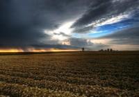 ¿Cómo contribuye la agricultura a prevenir el cambio climático?