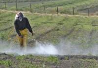 Se recupera el consumo de fertilizantes y se sitúa en niveles anteriores a la crisis
