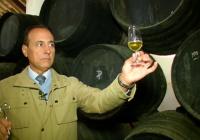 VÍDEO ¿Cómo se hacen los vinos espumosos andaluces?