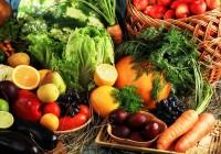Récord de exportaciones en agroalimentación, segundo sector productivo nacional