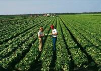 'Compromiso Verde': la campaña informativa para lograr el 100% de producción hortícola bajo control biológico