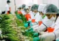En 2015 se crearon más de 1.800 empresas agrarias