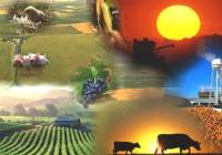 El Magrama pone en marcha InfoPAC, un servicio digital para aumentar el conocimiento de la Política Agraria Común