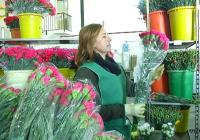 VÍDEO Reportaje sobre la flor cortada en Andalucía
