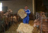 VÍDEO Rebaja de módulos del IRPF agrario