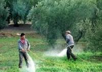 Coag advierte sobre los oligopolios que controlan e impiden que baje el precio de energía, fertilizantes y plásticos