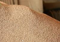 VÍDEO Biomasa con hueso de aceituna