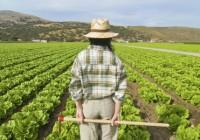 La Junta firma un convenio con 10 entidades financieras para que faciliten préstamos favorables a jóvenes agricultores