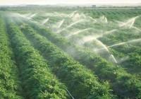 El uso de agua para el campo se ha reducido un 14% al año gracias a la modernización de riegos